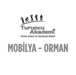 MOBİLYA - ORMAN ÜRÜNLERİ